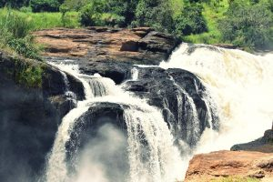 Murchison falls National Park 8