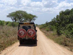 Laba Africa landcruiser