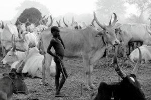 labaafrica-photo-South-sudan-tours