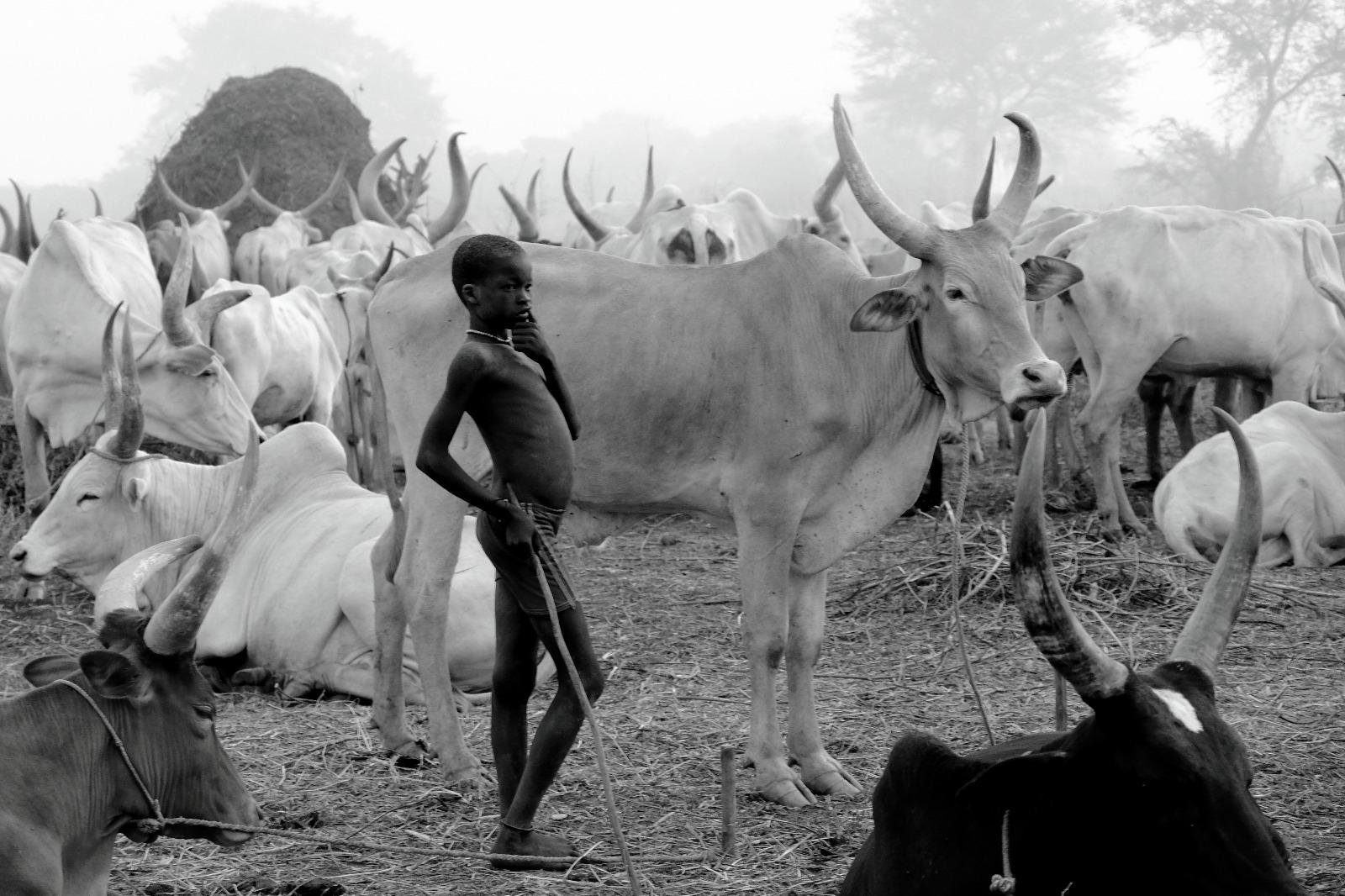 Южный Судан-туры-Лабаафрика-Фото