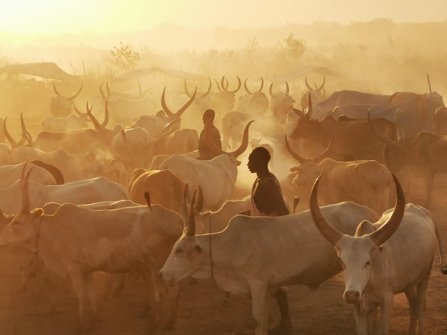 Mundari-Dinka-Photography-tour-laba-africa-expeditions-photo